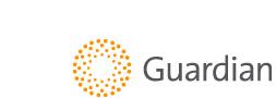 gesafety_logo